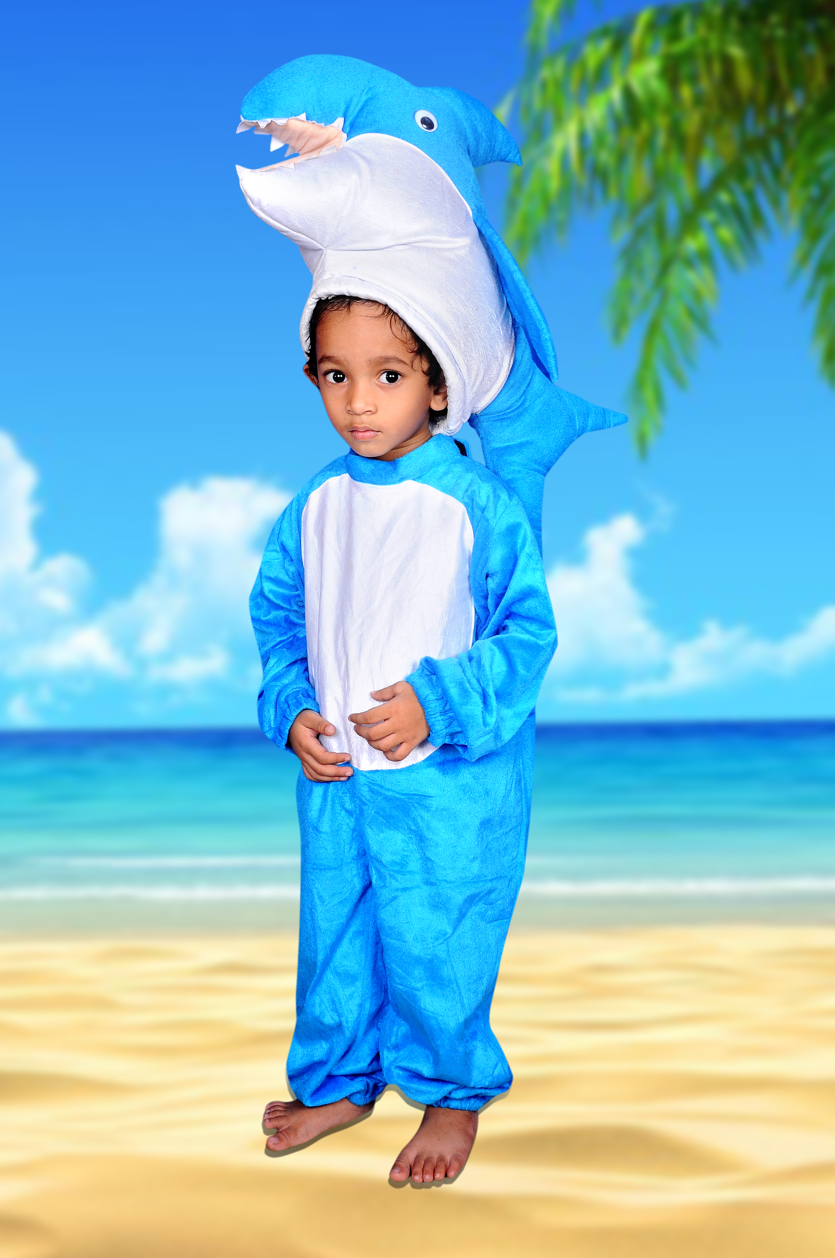 40a881abed Kids Fancy Dress Costumes For Sale In Costume Connexions 9884688463